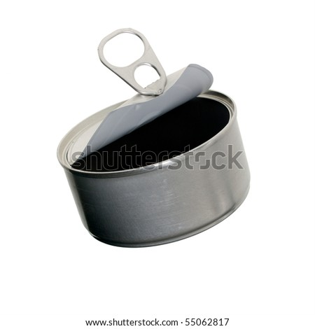 An empty silver metal cat food can is open and empty, with pull tab lid curled back.