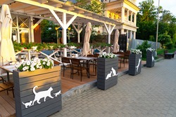 An empty street cafe with silhouettes of cats and kittens on vases with petunia flowers on the promenade of the city of Zelenogradsk, Kaliningrad region, Russia at sunset or dawn.