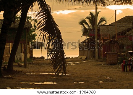 An empty street leading to a tropical beach (South America)