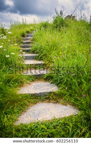 Stock Photo An enchanting stone staircase leads out of sight into the fairy garden meadows of Brigit's Garden in Oughterard, Ireland.
