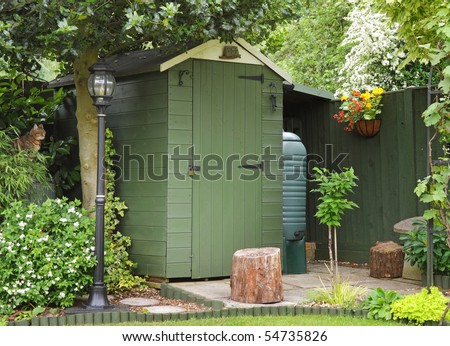 An English Back garden scene with Shed and Pet cat sitting amongst the foliage
