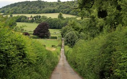 An English Rural Landscape in the Chiltern Hills with lane between tall hedgerows