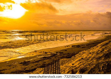 An enhanced golden sunrise on a Florida beach with a gull flying over the rolling waves #732586213