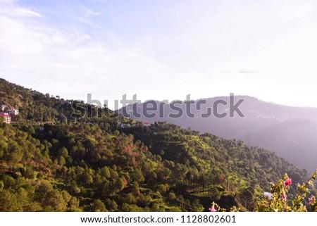 An evening view of Kasauli in Himachal Pradesh near Shimla. #1128802601