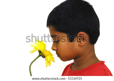 An handsome indian kid smelling a yellow flower