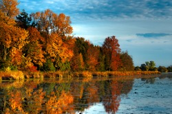 An HDR landscape of a forest in beautiful fall colors reflected in the still waters of a calm river in Ontario, Canada.