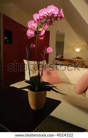 an hotel in Zurich