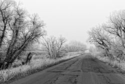 An icy Wyoming road vanishes in the mist