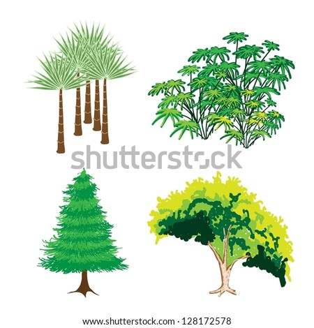 An Illustration Collection of Landscaping Tree Symbols or Isometric Green Trees and Plants, Variety of Plants, Evergreens and Trees for Garden Decoration