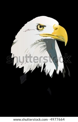 An illustration of a bald eagle head on a black background (jpeg version)