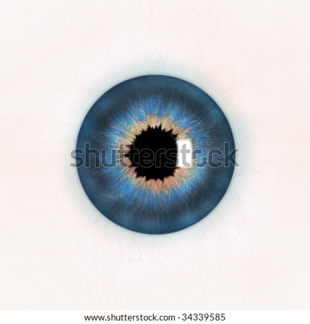 An illustration of a blue human eye.