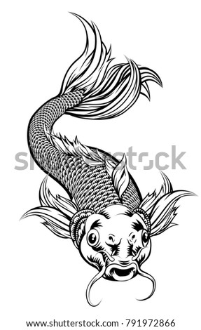 An illustration of a coy koi carp fish in a vintage woodcut style