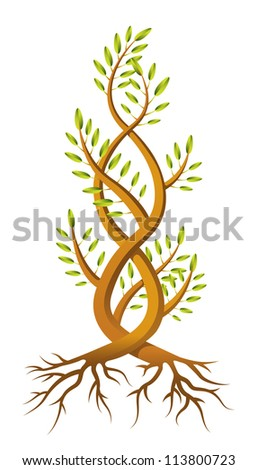 An illustration of two saplings twisted around each other in a helix. Raster.