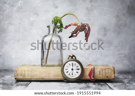 An illustrative interpretation of a decaying flower on an old gardening book with pocket watch, textured finish in a bottle vase Stock foto ©