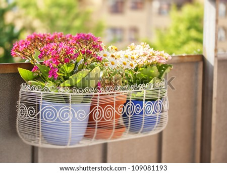 An image of a balcony flower box filled with plant-pots