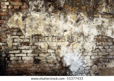 An image of a dilapidated moldy brick wall