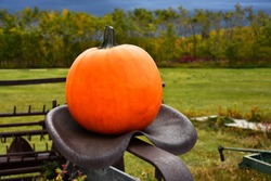 An image of a large orange pumpkin on old antique farming equipment.