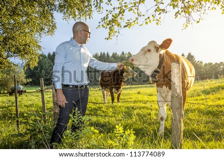 An image of a man feeding a cow