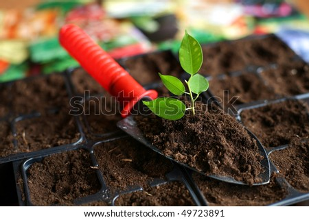 An image of a shovel with soil and plant