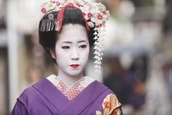 An Image of Apprentice Geisha