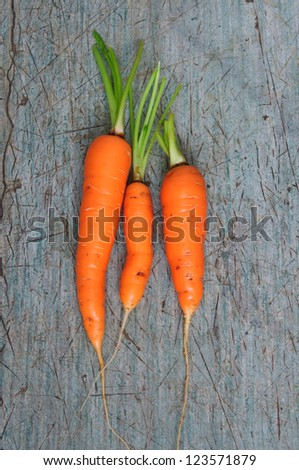 An image of bright orange carrots on grey background