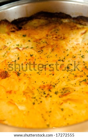 An image of cheesy potatoes au gratin
