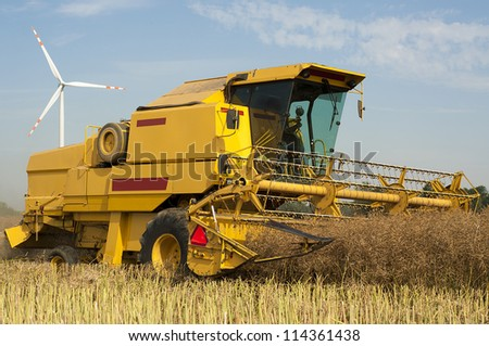 An image of combine harvesting rape