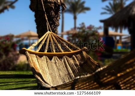 An Image of Hammock Swing in a Beautiful Mediterranean Palm Garden near the Beach, Hurghada, Egypt #1275666109