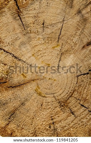 an image of high quality wooden background