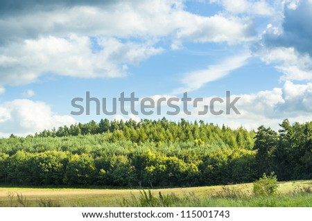 An image of landscape on late summer