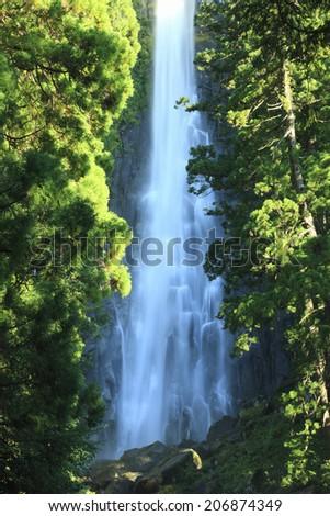 An Image of Nachi Falls #206874349