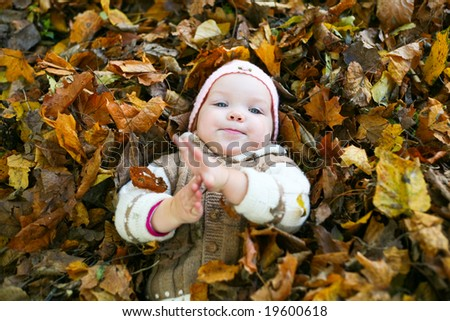 An image of nice baby in leaves in autumn park