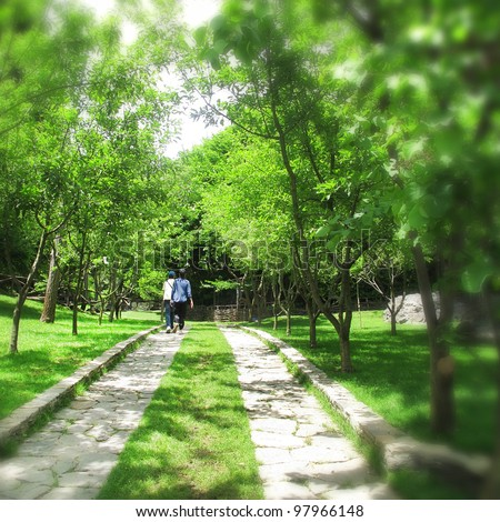 an image of people walking in nature