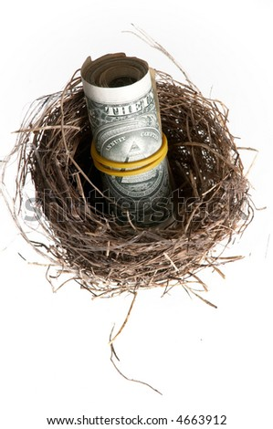 An image of roll of banknotes in nest.