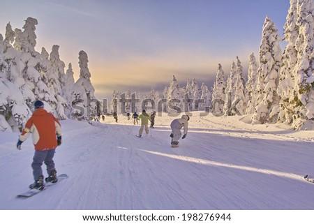 An Image of Ski Resort