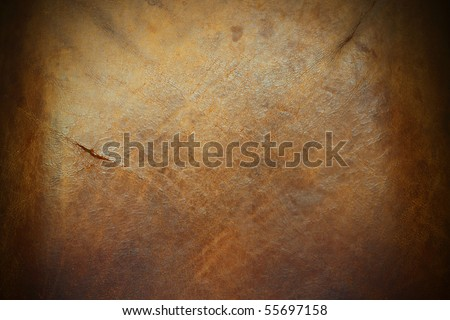 An image of the surface of a piece of old tanned leather hide.