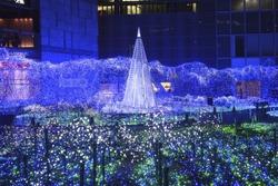 An Image of Xmas Illumination