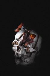 An image produced for halloween, all hallows' eve of a skeleton candy skull human head on a black background, skull has butterfly and flowers