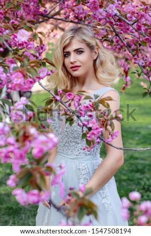 An incredible, delicate blonde in a luxurious, delicately blue dress walks in the spring, sakura and cherry orchards are in bloom. Princess with long curly hair. Vanilla color art photo #1547508194