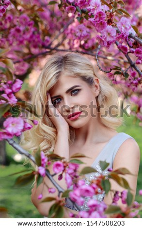 An incredible, delicate blonde in a luxurious, delicately blue dress walks in the spring, sakura and cherry orchards are in bloom. Princess with long curly hair. Vanilla color art photo #1547508203