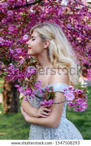 An incredible, delicate blonde in a luxurious, delicately blue dress walks in the spring, sakura and cherry orchards are in bloom. Princess with long curly hair. Vanilla color art photo #1547508293