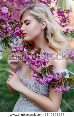 An incredible, delicate blonde in a luxurious, delicately blue dress walks in the spring, sakura and cherry orchards are in bloom. Princess with long curly hair. Vanilla color art photo #1547508299