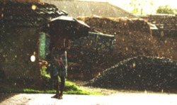 An Indian or asian aged man with a stick and he is posing on the street on a beautiful rainy day. Village scene. Defocused or blurred image. Umbrella. wearing a lungi and a gamcha.