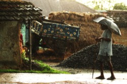 An Indian or asian aged man with s stick and he is posing on the street on a beautiful rainy day. Village scene. Defocused or blurred image. Old guy.Umbrella.walking stick,wearing lungi and kurta.