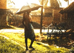 An Indian or asian aged man with umbrella.and he is posing on the street on a beautiful rainy day. Village scene. Defocused or blurred image. Lungi and gamcha.wearing