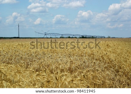 An irrigation system running over a wheat field. Selective focus. Shallow DOF.