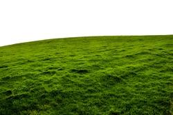 An Isolated green grass hillside