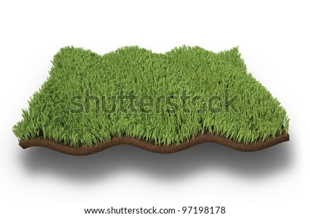 An isolated wavy patch of grass