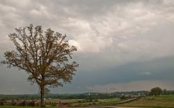An oak tree in a field on the Gettysburg battle field under stormy skies in spring in Pennsylvania