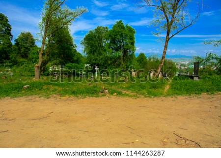 An old abandoned cemetery, crosses and graves overgrown with tall grass against the backdrop of tall trees and a blue sky. #1144263287